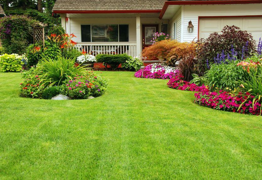Orland Park Landscape/Lawn Care